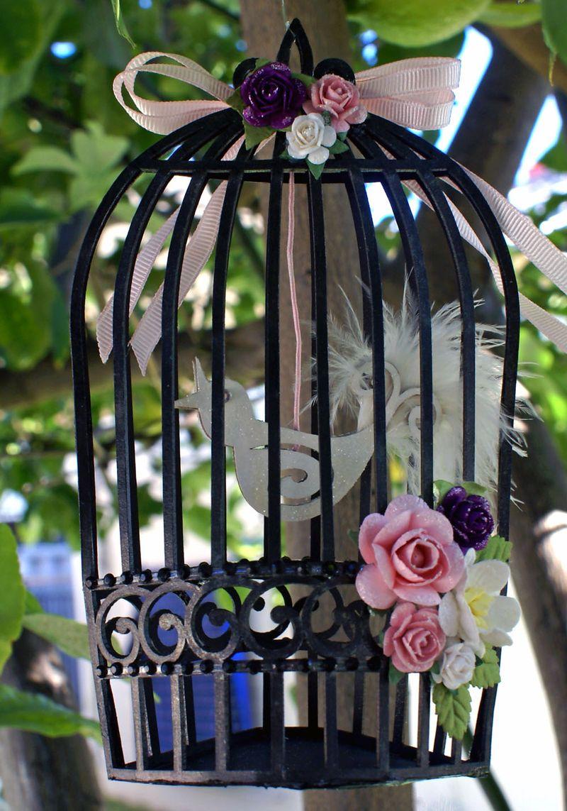 Bird Cage with bird