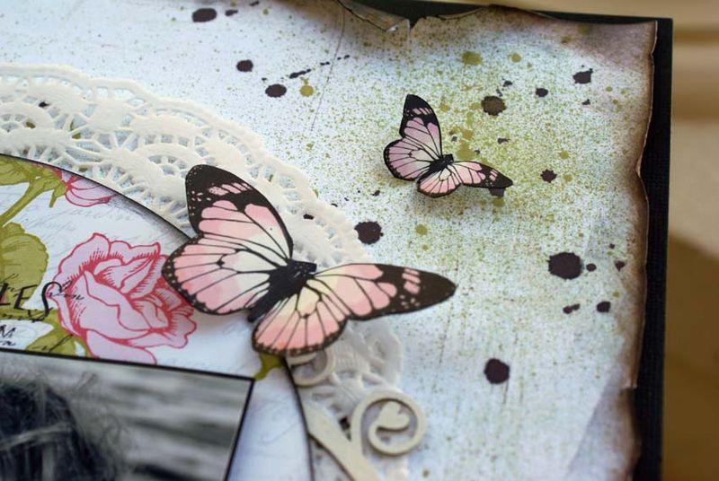 Timeless memories close up butterflies