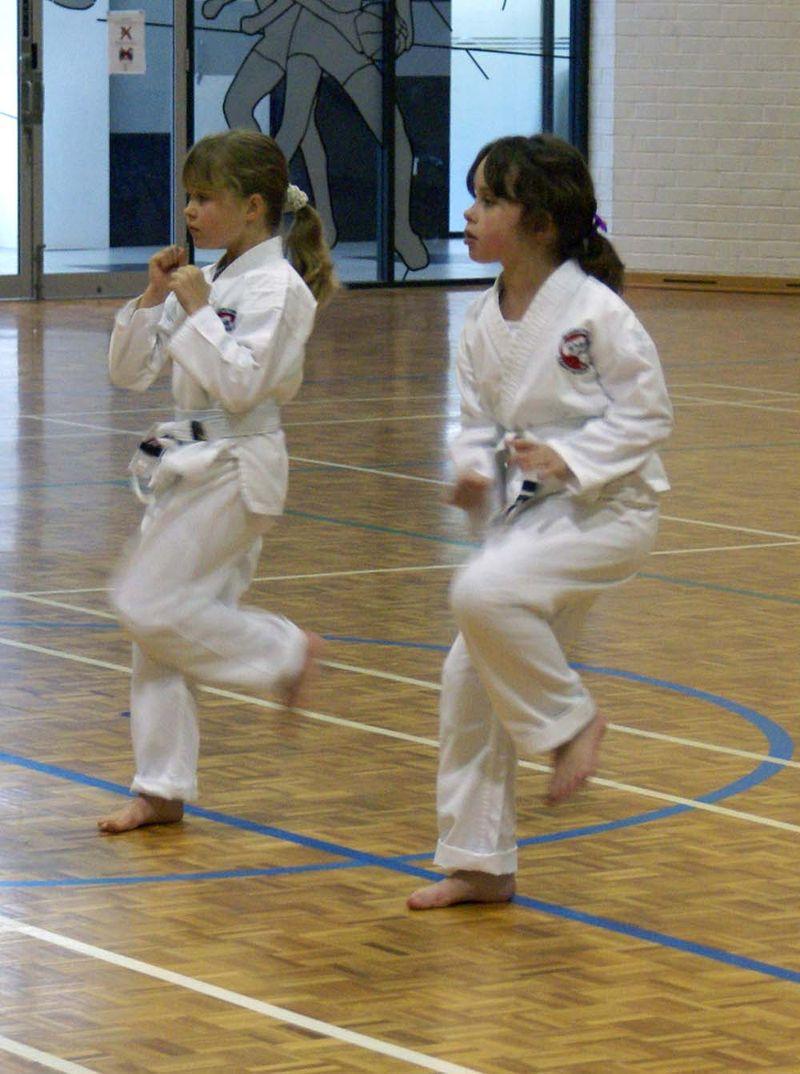 Karate grading