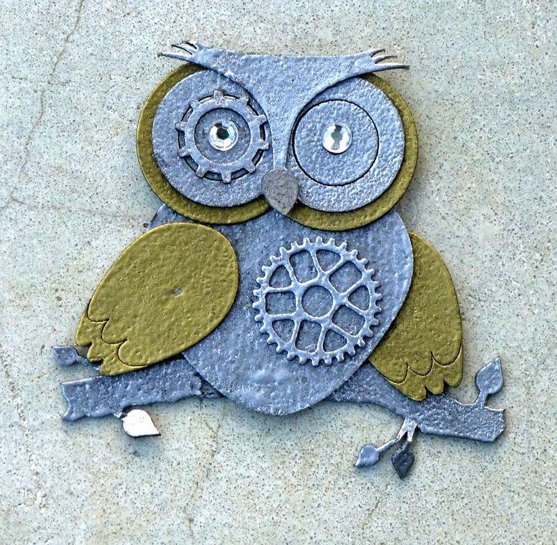 Brisbane owls sp