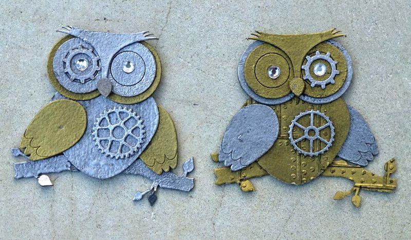Brisbane owls together